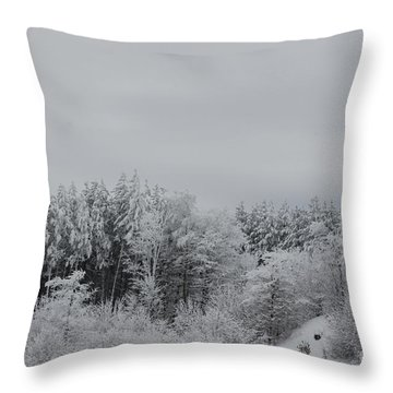 Cold Mountain Throw Pillow by Randy Bodkins
