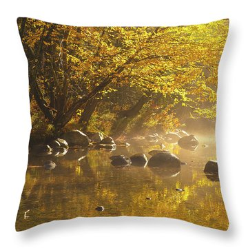 Cold River Throw Pillow