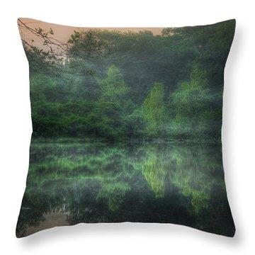 Cold Spring Lake Throw Pillow