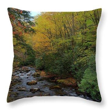 Cold Stream Throw Pillow