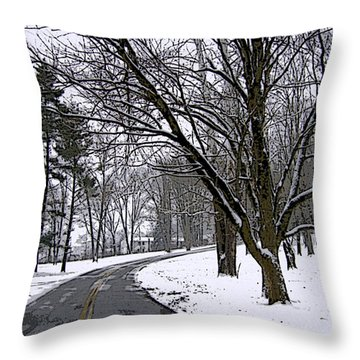 Throw Pillow featuring the photograph Cold Winter Day by Skyler Tipton