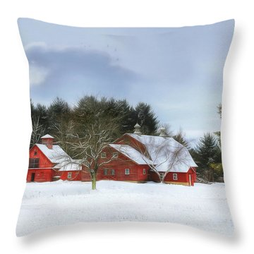 Cold Winter Days In Vermont Throw Pillow
