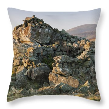 Coldberry Hill Throw Pillow
