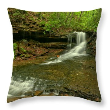 Cole Run Cave Falls Pa Throw Pillow
