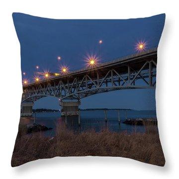Coleman At Night Throw Pillow