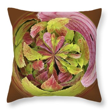 Throw Pillow featuring the photograph Coleous In Orb by Bill Barber