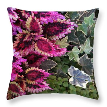 Throw Pillow featuring the mixed media Coleus And Ivy- Photo By Linda Woods by Linda Woods