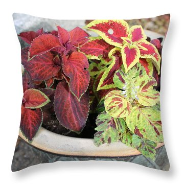 Coleus Throw Pillow
