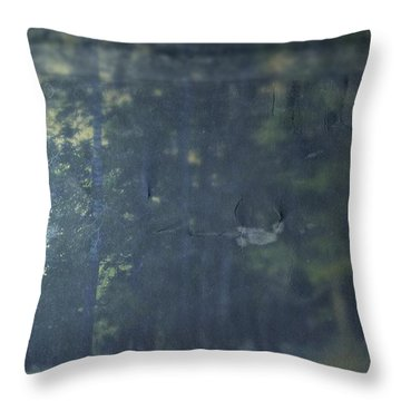 Throw Pillow featuring the photograph Collect by Mark Ross