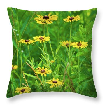 Throw Pillow featuring the photograph Collection In The Clearing by Bill Pevlor