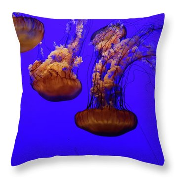 Collection Of Jellyfish Throw Pillow