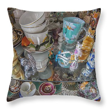 Throw Pillow featuring the photograph Collector's Item by Vladimir Kholostykh