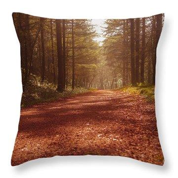Colligan Autumn 2 Throw Pillow