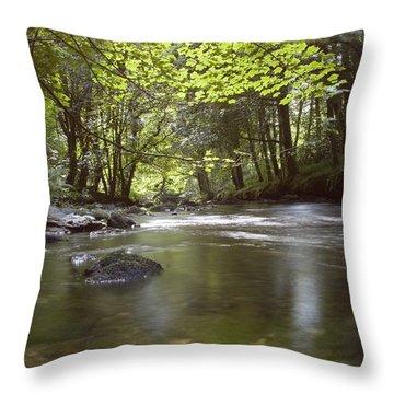 Colligan River 2 Throw Pillow