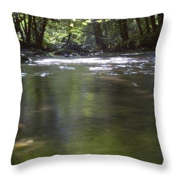 Colligan River 3 Throw Pillow