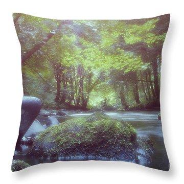 Colligan River Dream 2 Throw Pillow