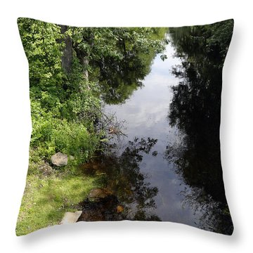 Throw Pillow featuring the photograph Collins Creek June 15 2015 by Jim Vance