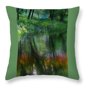 Collins Creek Reflections Throw Pillow