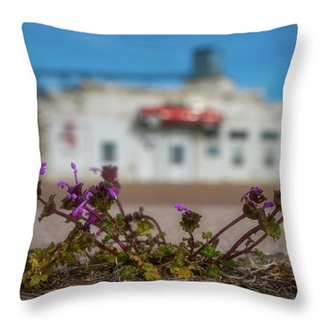 Throw Pillow featuring the photograph Collyer Sidewalk Blooms by Darren White