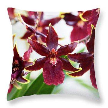 Colmanara Wildcat Orchid Throw Pillow