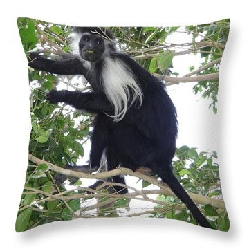 Education By Traveling Throw Pillows