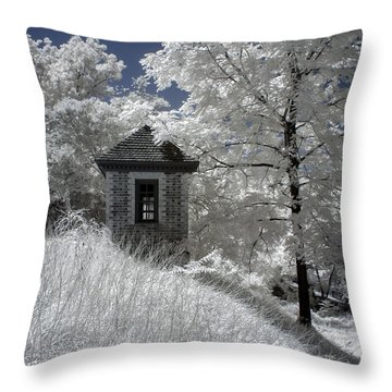Colonial Williamsburg Shed On A Hill Throw Pillow