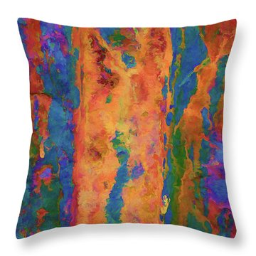 Color Abstraction Lxvi Throw Pillow by David Gordon