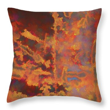 Color Abstraction Lxxi Throw Pillow by David Gordon