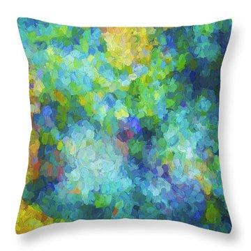Color Abstraction Xliv Throw Pillow by David Gordon