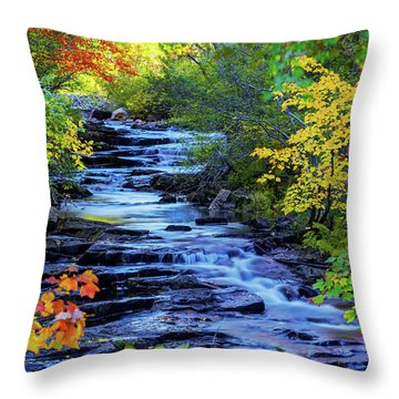 Color Alley Throw Pillow