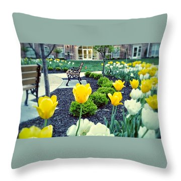 Color At College Throw Pillow by Dustin Soph