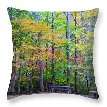 Color Benches Throw Pillow