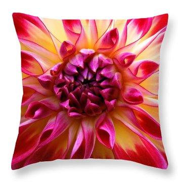 Color Burst Dahlia  Throw Pillow