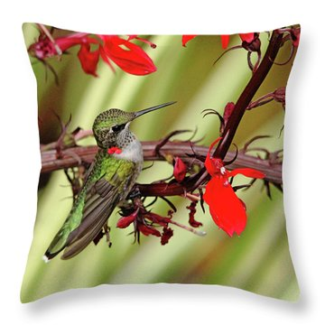 Color Coordinated Hummer Throw Pillow by Debbie Oppermann
