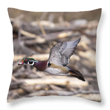 Color Flight II Throw Pillow