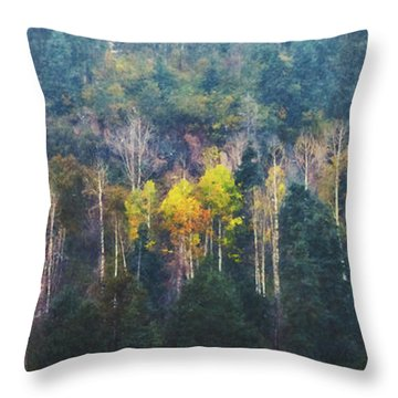 Color In A Snowstorm Throw Pillow