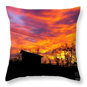 Color In The Sky Throw Pillow
