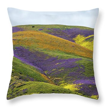 Throw Pillow featuring the photograph Color Mountain I by Peter Tellone