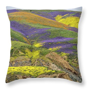 Color Mountain II Throw Pillow