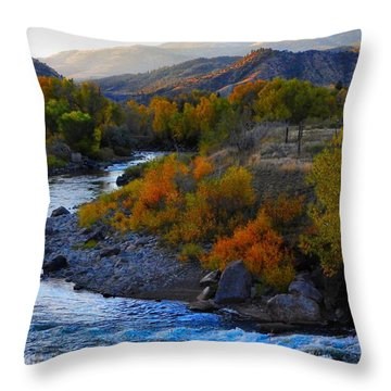 Color On The Fly Throw Pillow