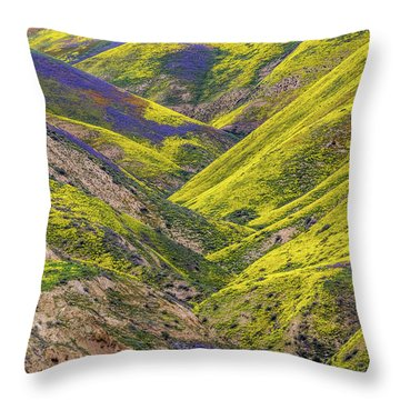Throw Pillow featuring the photograph Color Valley by Peter Tellone