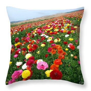 Color Way To Horizon Throw Pillow by Arik Baltinester