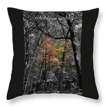 Color Your World Throw Pillow by Geri Glavis