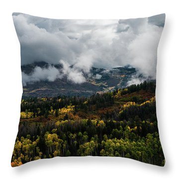 Colorado - 0239 Throw Pillow