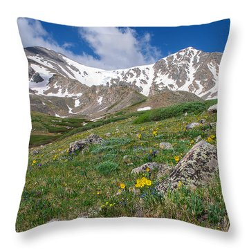 Colorado 14ers Grays Peak And Torreys Peak Throw Pillow