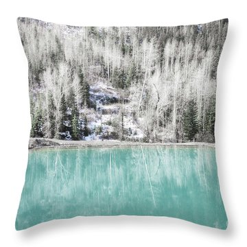 Colorado Aqua Woodland Forest Landscape Throw Pillow by Andrea Hazel Ihlefeld