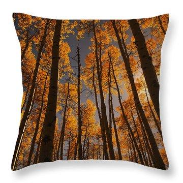 Colorado Aspens Throw Pillow