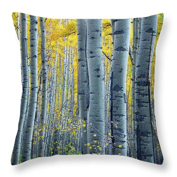 Colorado Aspens Throw Pillow by Inge Johnsson