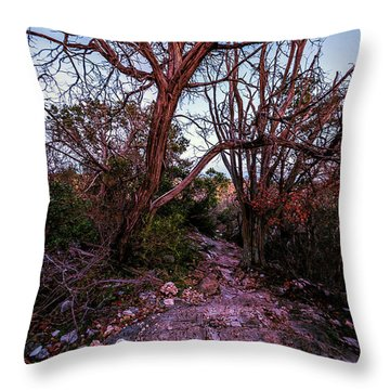 Colorado Bend State Park Gorman Falls Trail #3 Throw Pillow by Micah Goff
