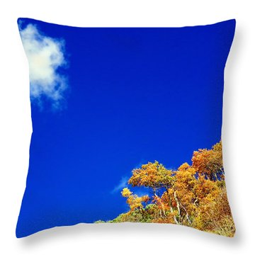 Colorado Blue Throw Pillow